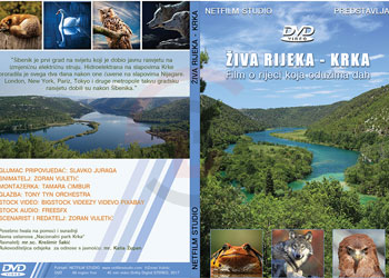 dvd-cover2